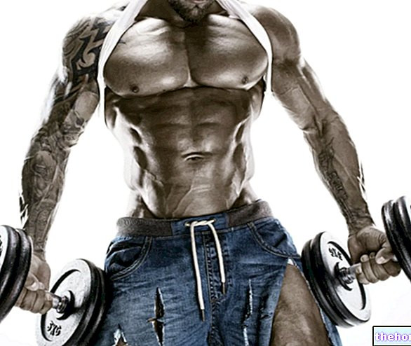 How Many Reps to Gain Muscle Mass? - training-techniques